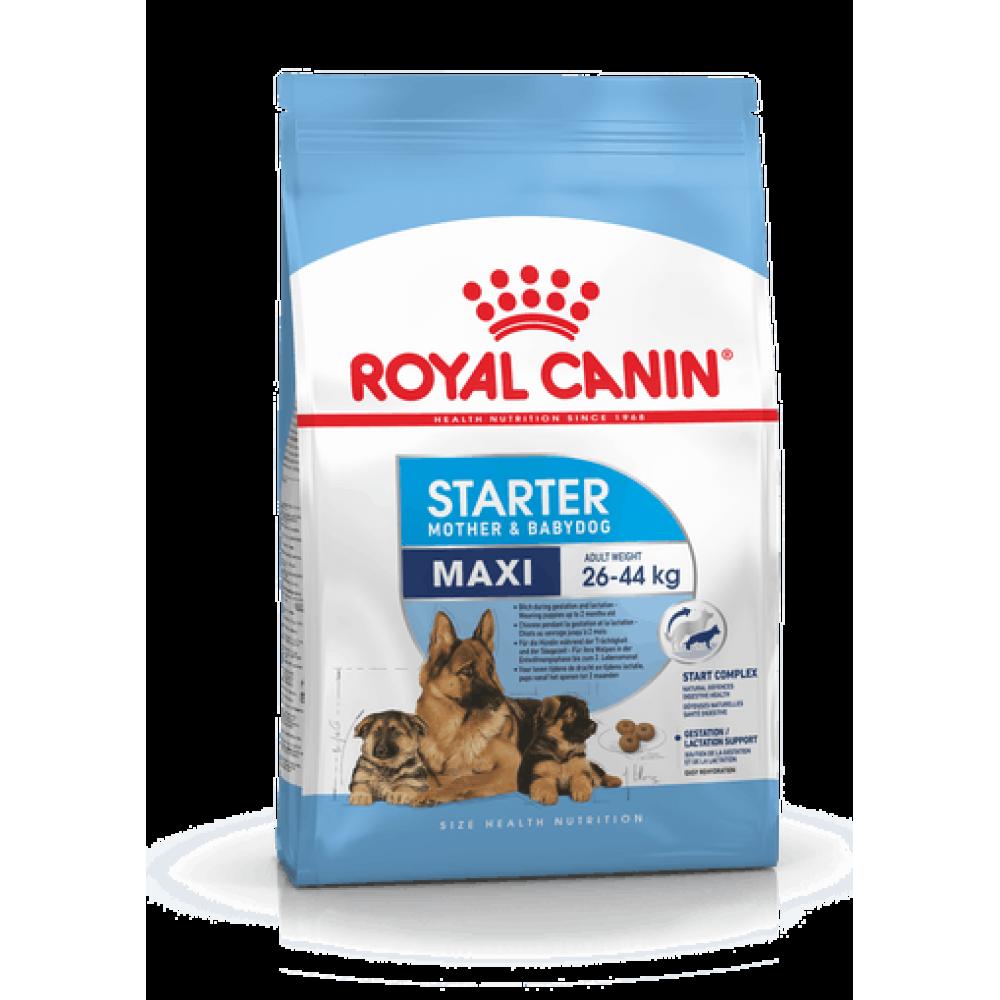 ROYAL CANIN Maxi Starter Mother & Babydog. Сухой корм для щенков крупных пород в период отъема до 2 месяцев